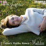 "Listen To Tiësto's Remix Of Miley Cyrus' ""Malibu"""