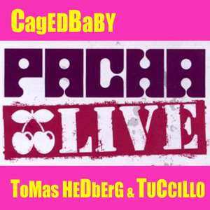 Pacha Live - Cagedbaby