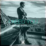 """Armin van Buuren Shares New Single """"I Need You"""" with Garibay & Olaf Blackwood"""