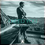 "Armin van Buuren & Fernando Garibay Premiere New Single ""I Need You"""
